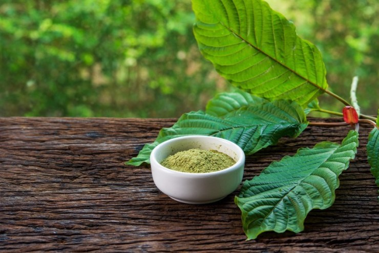 Marijuana Vs Kratom: A Tale of Two Herbs